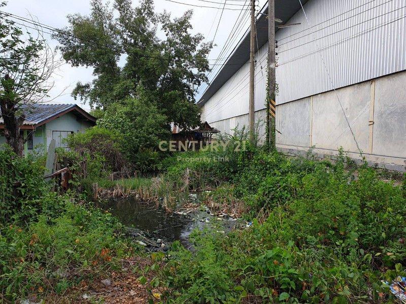 Land for sale Tha Sa An, Bang Pakong-Chachoengsao /38-LA-62049 - 4015511
