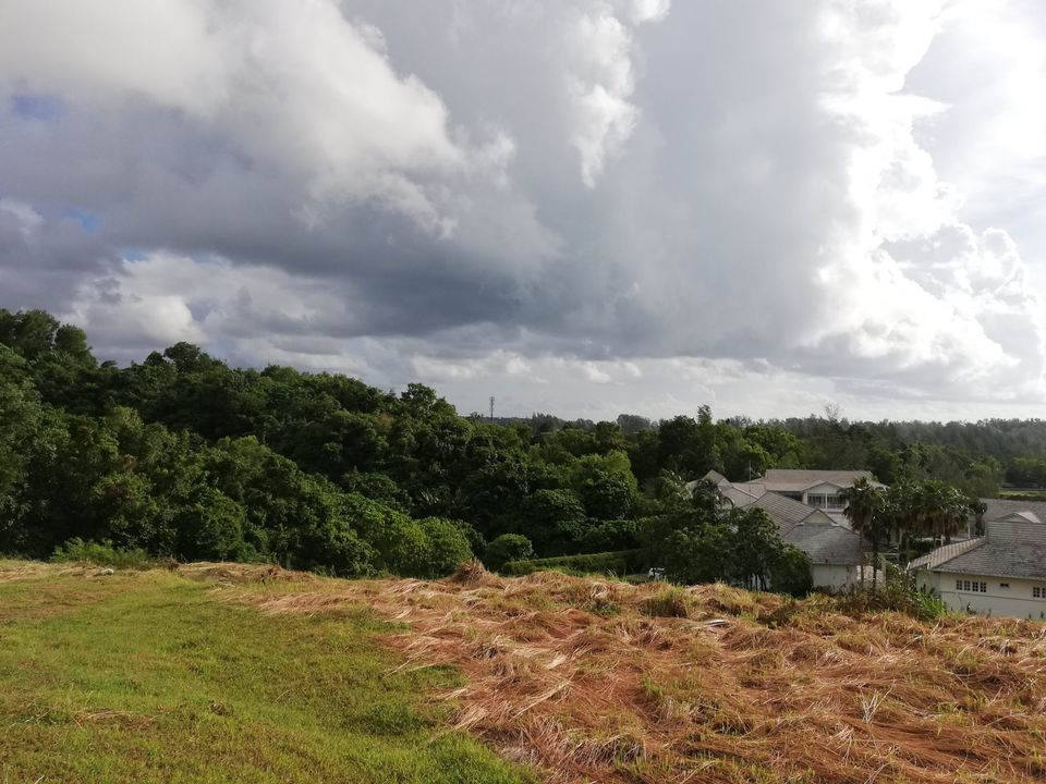 Elevated Land Plot Overlooking Layan in Layan (ID: LFS-015)