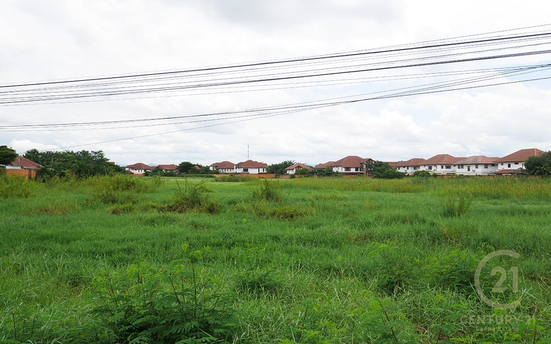 Land for sale at Pa Bong, Saraphi
