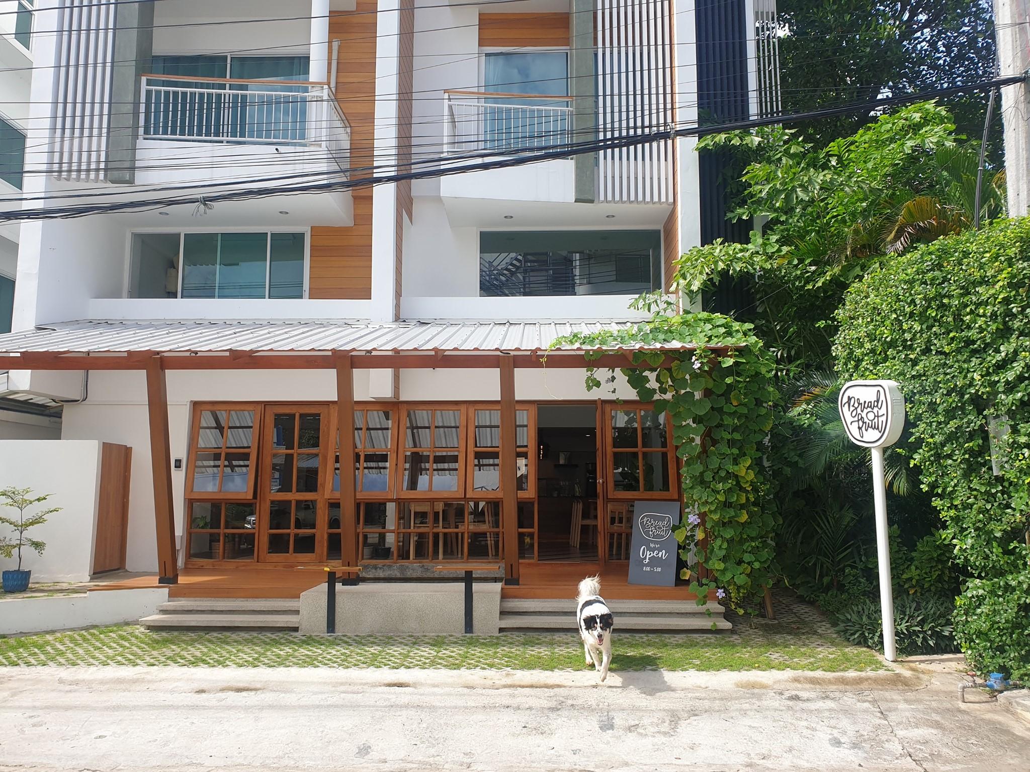 Lovely Stylish Hostel Business for SALE in Nimman